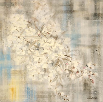 Framed White Cherry Blossom III Print