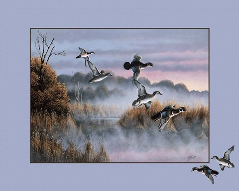Framed Ducks In Flight 2 Print