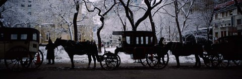 Framed Horse Drawn Carriages, Chicago, Illinois Print