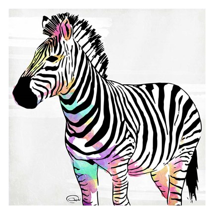 Framed Zebra Head Colorful Print