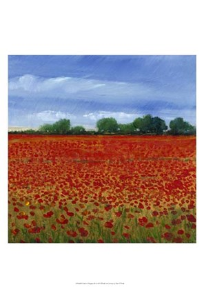 Framed Field of Poppies II Print