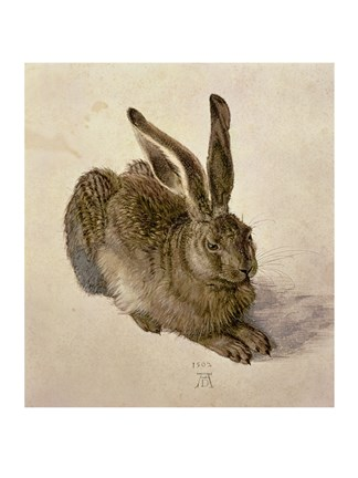 Framed Young Hare, c.1502 Print