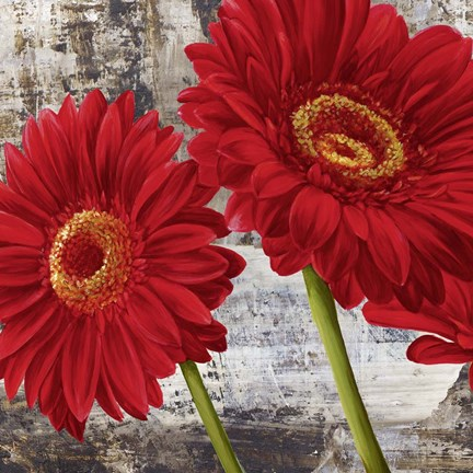 Framed Red Gerberas I Print