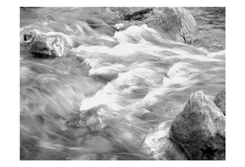Framed In Motion BW 2B Print