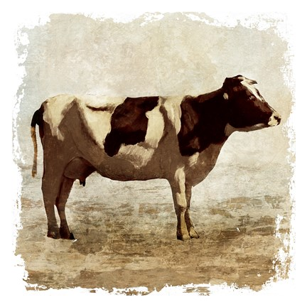 Rustic Cow Fine Art Print By Edward Selkirk At
