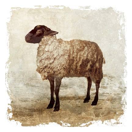 Framed Rustic Sheep Print