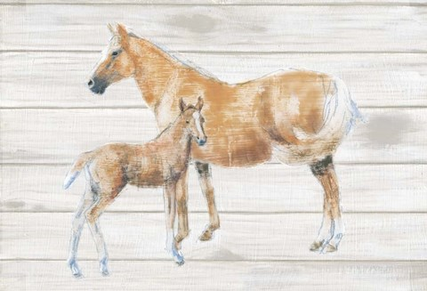 Framed Horse and Colt on Wood Print