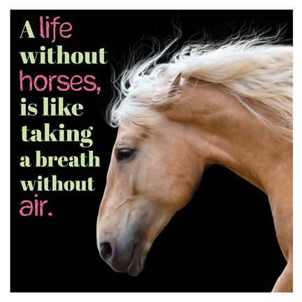 Framed Horse Quote 7 Print