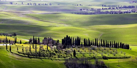 Framed Country houses in Tuscany Print