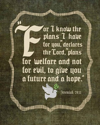 Framed Jeremiah 29:11 For I know the Plans I have for You (White Dove) Print