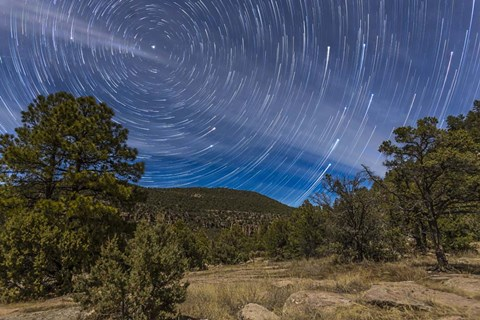 Framed Circumpolar star trails over the Gila National Forest in southern New Mexico Print