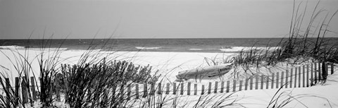 Framed Fence on the beach, Bon Secour National Wildlife Refuge, Bon Secour, Alabama Print