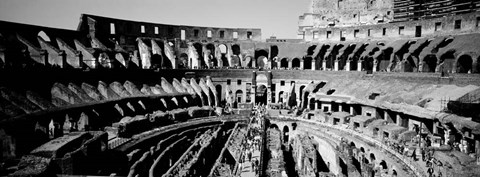 Framed High angle view of tourists in an amphitheater, Colosseum, Rome, Italy BW Print