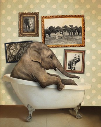 Framed Elephant In Tub Print
