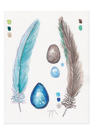 Framed Feather and Egg Study 2 Print