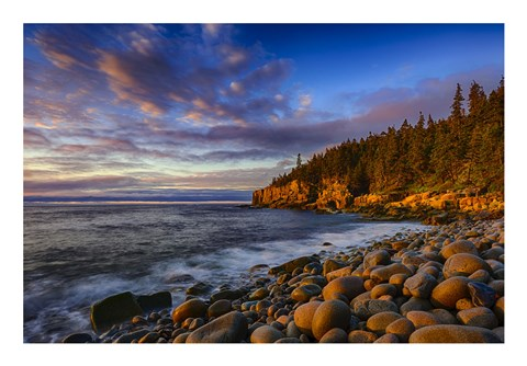 Framed Sunrise on Otter Cliffs #4 Print