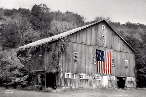 Framed Patriotic Farm II Print