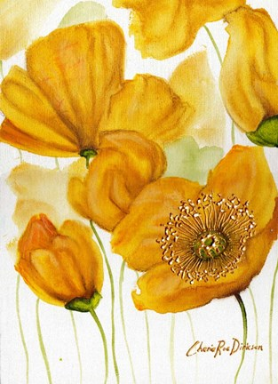 Framed Yellow Poppies Print