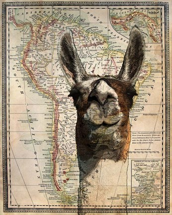 Framed South America Llama Map Print