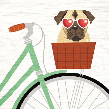 Framed Beach Bums Pug Bicycle I Print