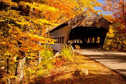 Albany Covered Bridge New Hampshire Fine Art Print By Brian Jannsen Danita Delimont At