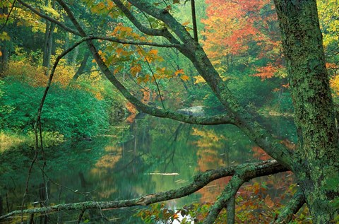 Framed Fall on the Lamprey River below Wiswall Dam, New Hampshire Print