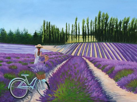 Picking Lavender Fine Art Print By Julie Peterson At