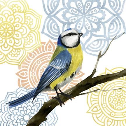 mandala bird i fine art print by grace popp at fulcrumgallery com