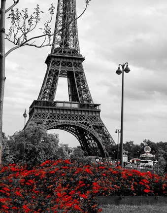 Framed Eiffel Tower with Red Pop Print