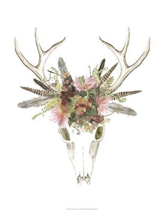 Deer Skull Amp Flowers I Fine Art Print By Naomi Mccavitt At
