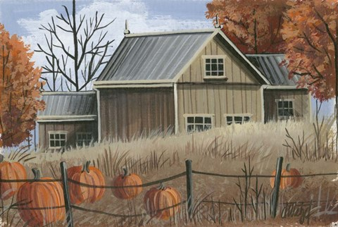 Pumpkin Field Fine Art Print By Debbi Wetzel At