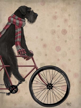 Framed Schnauzer on Bicycle, Black Print