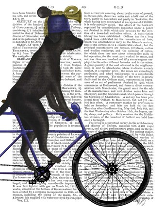Framed Black Labrador on Bicycle Print