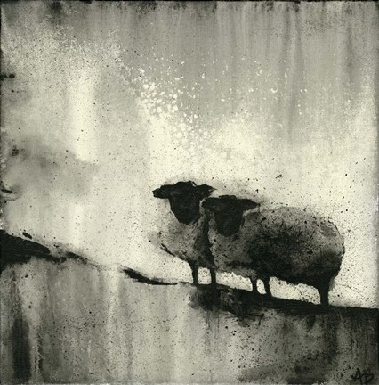 Framed BW Sheep Print