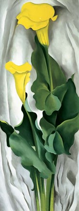 Framed Yellow Calla Print
