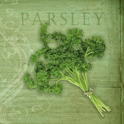 Framed Classic Herbs Parsley Print