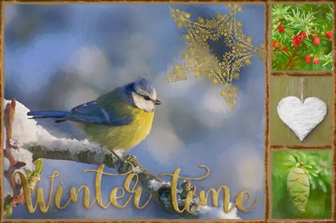 Framed Winter Time Bluetit Print