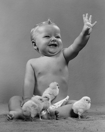 Framed 1950s Laughing Baby Surrounded By Little Baby Chicks Print
