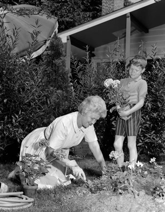 Framed 1960s Boy Helping Grandmother Plant Flowers Print