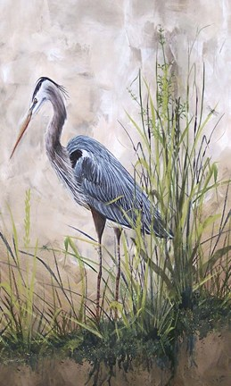 Framed In The Reeds - Blue Heron - B Print