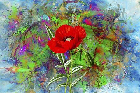color explosion 13 fine art print by ata alishahi at fulcrumgallery com