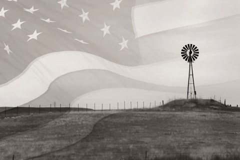 Framed Patriotic Windmill Print