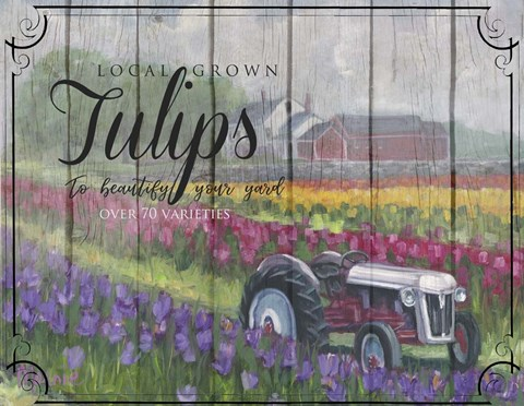 Framed Tractoring Through The Tulips Print
