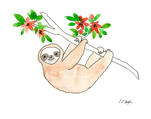 Framed Hanging Sloth Print