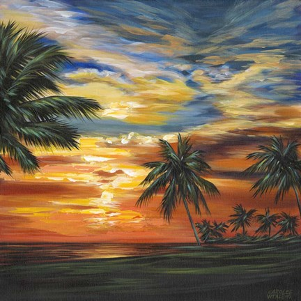 Framed Stunning Tropical Sunset II Print