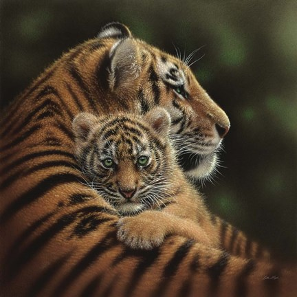 Framed Tiger Mother and Cub - Cherished Print