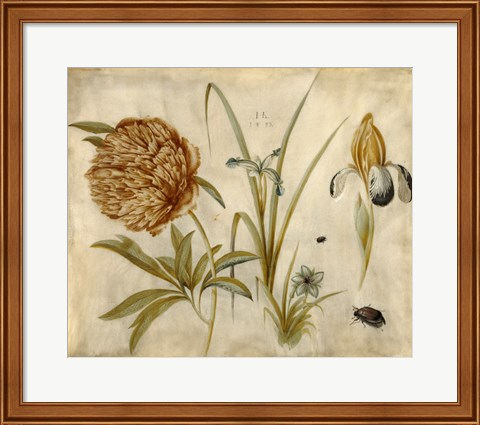 Framed Flowers and Beetles Print