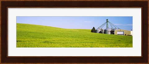 Framed Wheat field with silos in the background, Palouse County, Washington State Print